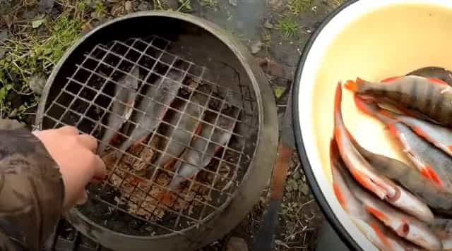 Раскладываем рыбу в коптильню