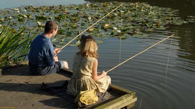За невыполнение норм и правил рыбалки предусмотрены штрафы